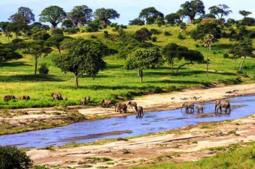 Національний парк Китуло